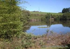 Lily ponds on main lake #dordognelakeproperty